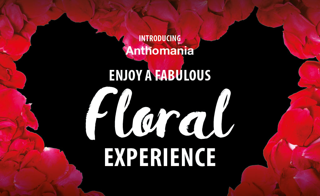 floral-experience